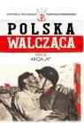 Polska Walcząca Tom 27 Akcja N
