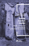 Dawid kontra Goliat Niemieckie specjalne środki bojowe w Powstaniu Praca zbiorowa