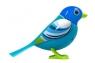 DigiBirds z ramką Blue