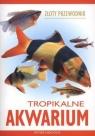 Tropikalne akwarium. Złoty przewodnik