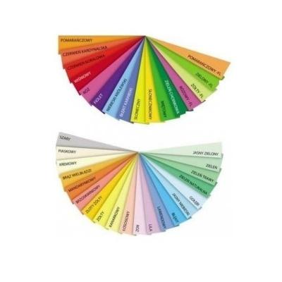 Papier kolorowy Trophee kolorowy A4 - szary stalowy 80 g (xca41993)