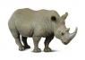 Nosorożec szary (004-88031)