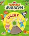 Akademia malucha Liczby z płytą CD