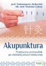 Akupunktura Praktyczny przewodnik po chińskiej sztuce medycznej Badarchin Tsolmonpurev, Galsan Khandaa