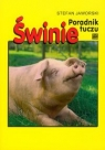 Świnie poradnik tuczu Jaworski Stefan