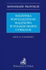 Małżeńska współzależność majątkowa w polskim prawie cywilnym Łukasiewicz Jakub Michał