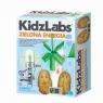 KidzLabs: Zielona energia (5531)