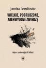 Wielkie pobrudzone zachwycone zwierzę Iwaszkiewicz Jarosław