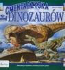 Zobacz na własne oczy Cmentarzyska dinozaurów