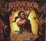 Baśniobór Plaga cieni (audiobook) Mull Brandon