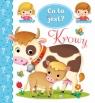 Co to jest? Krowy