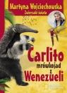 Carlito mrówkojad z Wenezueli