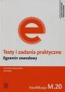 Testy i zadania praktyczne Egzamin zawodowy Technik mechanik ślusarz M.20
