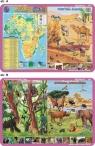 Podkładka edukacyjna. Afryka mapa fizyczna, zwierzęta ? pust