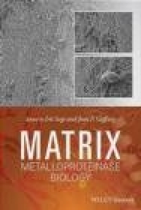 Matrix Metalloproteinase Biology