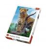 Puzzle 500: Dziki lampart (37332)