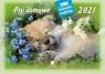 Kalendarz 2021 Rodzinny Psy domowe WL8