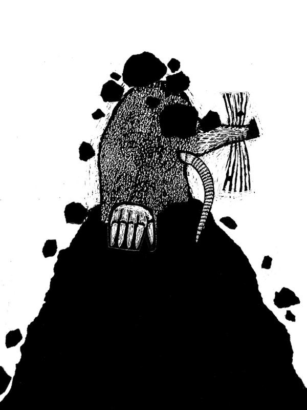 Zwierzaki zwyklaki Dumon Tak Bibi