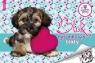 Blok rysunkowy biały A4 20 kartek Sweet Pets