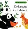 Montessori Zwierzęta i ich dzieci