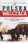 Polska Walcząca Tom 29 Zrzuty broni i produkcja uzbrojenia Krawczyk Maciej