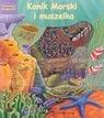 Konik morski i muszelka