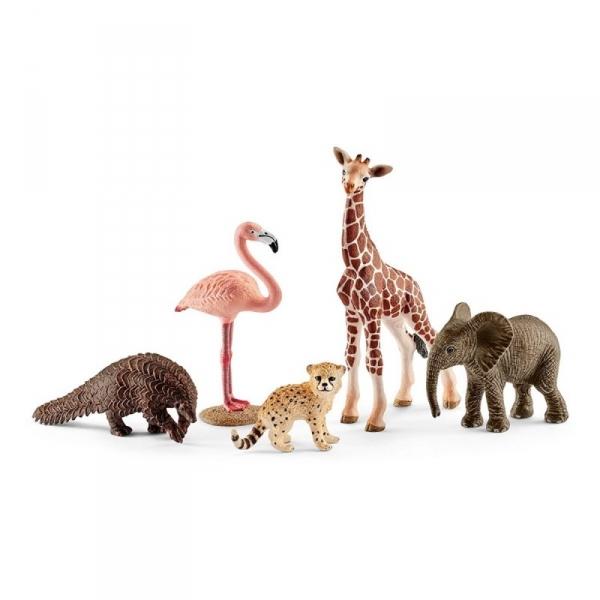 Dzikie zwierzęta Mix - 42388