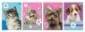 Notes z poddrukiem A6 Zwierzęta 30 kartek 12 sztuk