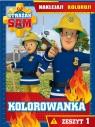 Strażak Sam - Kolorowanka. Naklejaj! Koloruj! Zeszyt 1