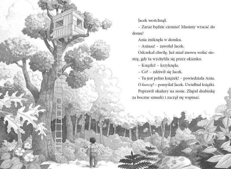 Magiczny domek na drzewie. Dinozaury przed zmrokiem. Tom 1 Osborne Mary Pope