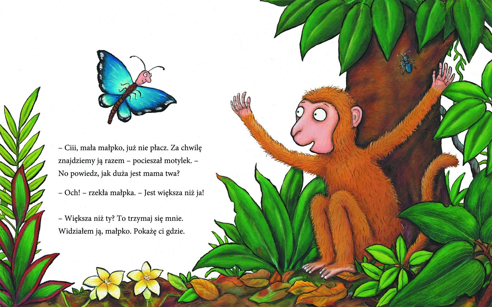 Zagubiona małpka Julia Donaldson, Axel Scheffler