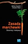 Zasada marchewki