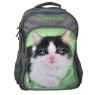 Plecak szkolny z kotkiem 13-A851