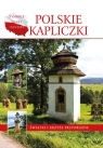 Polskie kapliczki Świątki i krzyże przydrożne Paterek Anna