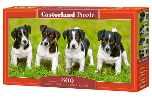 Puzzle 600 Jack Russell Terrier Puppies (B-060337)