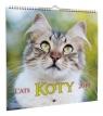 Kalendarz 2020 Koty