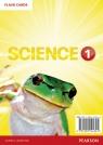 Big Science 1 Flashcards