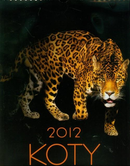 Kalendarz 2012 Koty