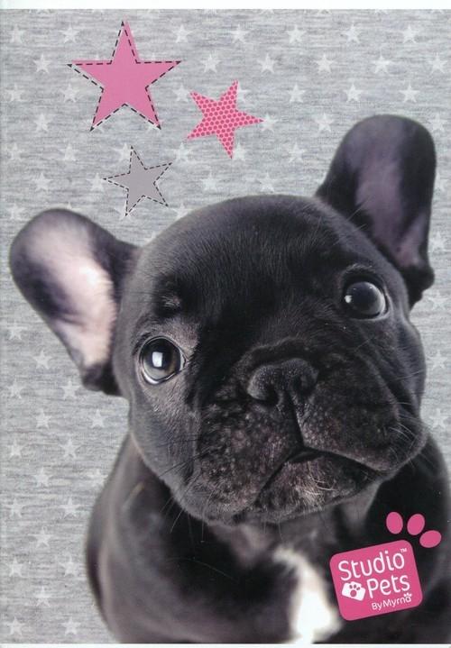 Zeszyt A5 Studio Pets w trzy linie 16 kartek