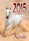 Kalendarz 2015 Konie SM 3
