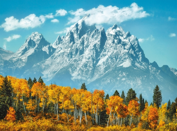 Puzzle High Quality Collection 500: Grand Teton in fall (35034)
