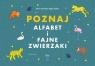 Poznaj alfabet i fajne zwierzaki Aggie Szyfter