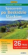 Spacerem po Beskidzie Śląskim Przewodnik turystyczny