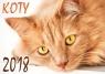 Kalendarz 2018 Koty SM4