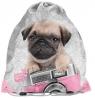 Worek na buty Studio Pets PEY-712 PASO