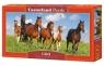 Puzzle 600 Horse Paradise