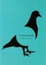 Gołębie rozmowy Bursztyński Grzesiek