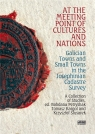 At the Meeting Point of Cultures and Nations red. Tomasz Kargol, Bogdana Petryszak, Krzysztof