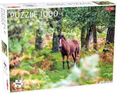Puzzle 1000: Wild Horses, New Forest (56235)