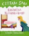 Czytam sam Księżniczka na ziarnku grochu Książka z naklejkami